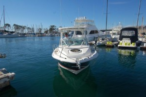 "22' WELLCRAFT 220 COASTAL (2016) ""JUNEBIRD"""