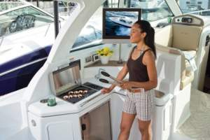 43' CRUISERS YACHTS 430 SPORTS COUPE (2013)