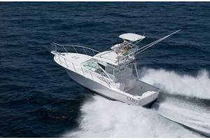 """32' CABO 32 EXPRESS (2008) """"ANNEAL"""""""