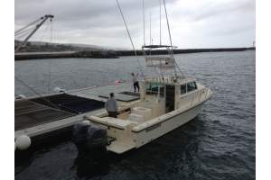 34' PARKER 3420 SPORTFISHING/WHALE WATCHING CHARTER