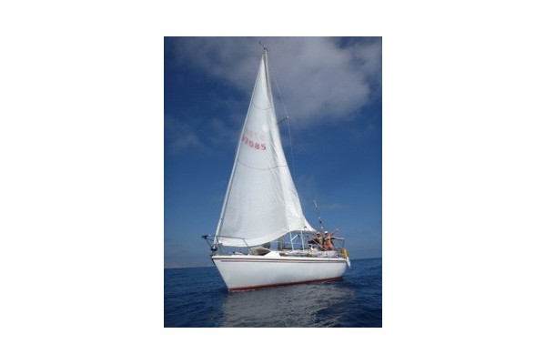 "34' CATALINA SAILBOAT CHARTER ""CAMPBELL'S SLOOP"""
