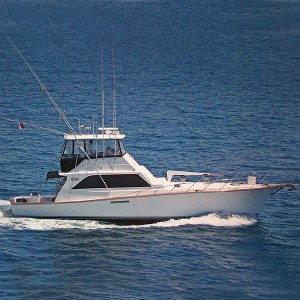 Luxury Charters In Dana Point By Dick Simon Yachts Fishing