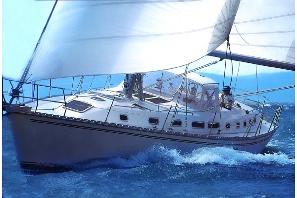 1995 45' MORGAN CATALINA 45 Sailboat for sale in San Diego California