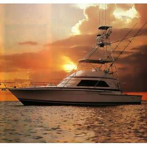 "50' BERTRAM 50 CONVERTIBLE SPORTFISHER (1994) ""GET REEL"""