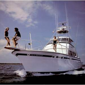 "58' BERTRAM 58 CONVERTIBLE SPORTFISHER (1980) ""BASIC INSTINCT"""