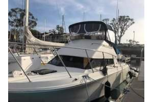 "26' SKIPJACK 262 FLYING BRIDGE (2000) ""STRESS NAWGHT"""