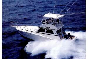 "41' VIKING 41 CONVERTIBLE (1986) ""FINS UP"""