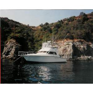 "43' TIARA 4300 CONVERTIBLE (1993) ""EAGLE EYE"""