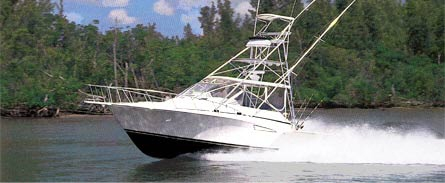 Boat Review Cabo 35 Express: Sport Fishing By Dean Travis Clarke